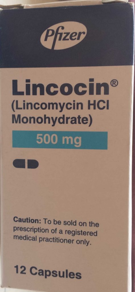 Lincocin Injection Uses || THERAPEUTIC INDICATIONS ||Lincomycin Uses